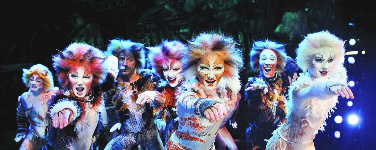 The best Quotes from Cats
