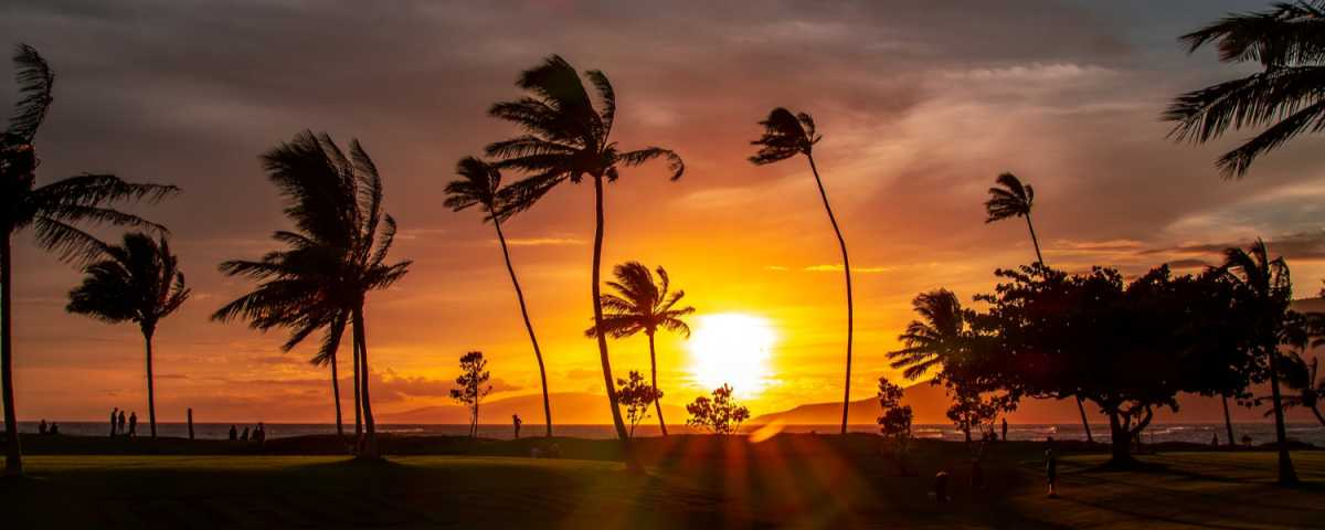 The best Quotes and Sayings about Hawaii