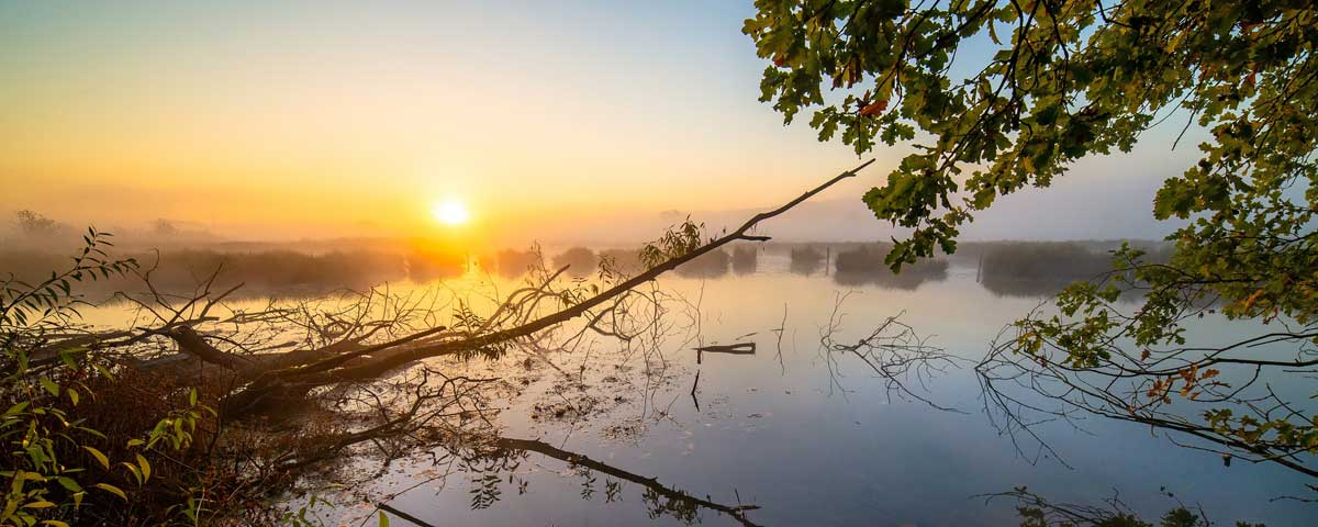 The best Quotes about Sunrise