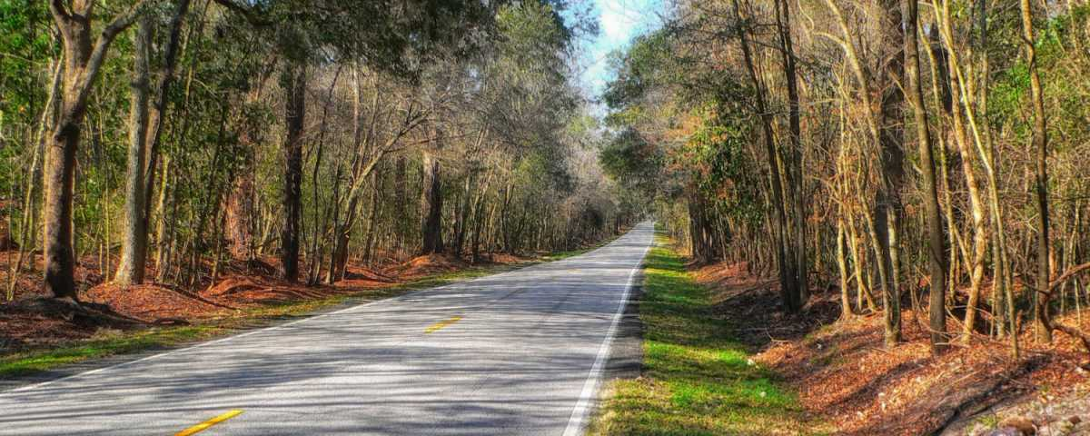 The best Quotes and Sayings about South Carolina