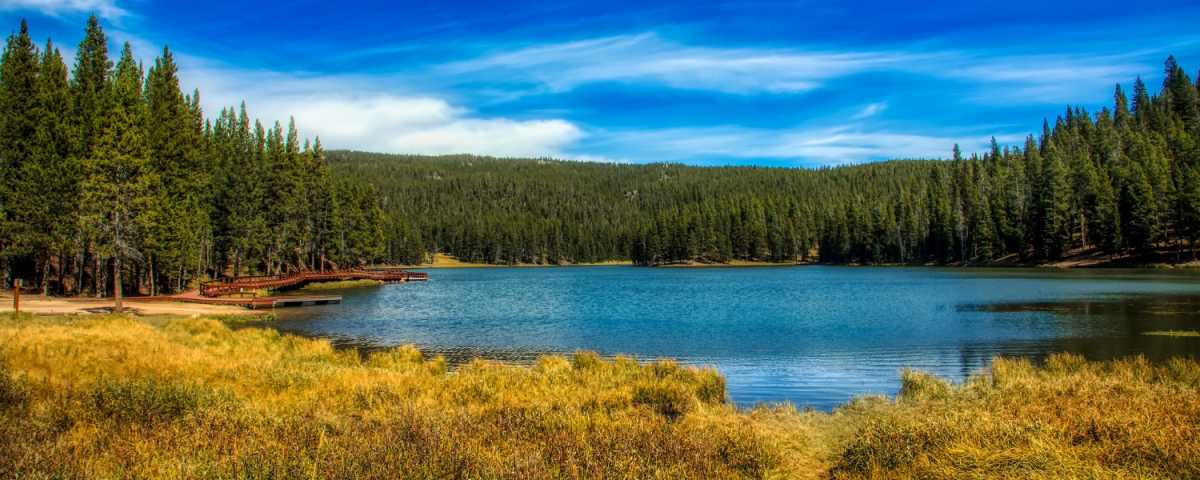 The best Quotes and Sayings about Wyoming